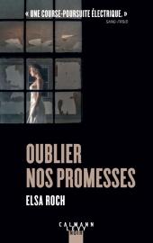 Chronique Dora-Suarez Oublier nos promesses - Elsa Roch